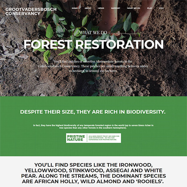 Bringing forests and fynbos to life – online…